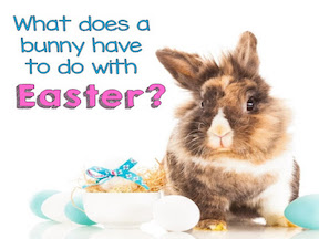 What Does The Rabbit Have To Do With It?