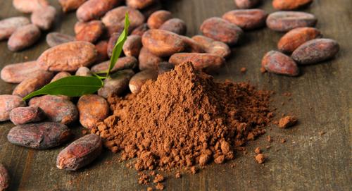 cocoa beans 2