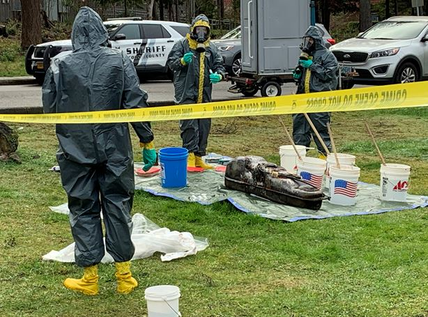 Read more about the article Suspected DMT Lab Located in Coos Bay