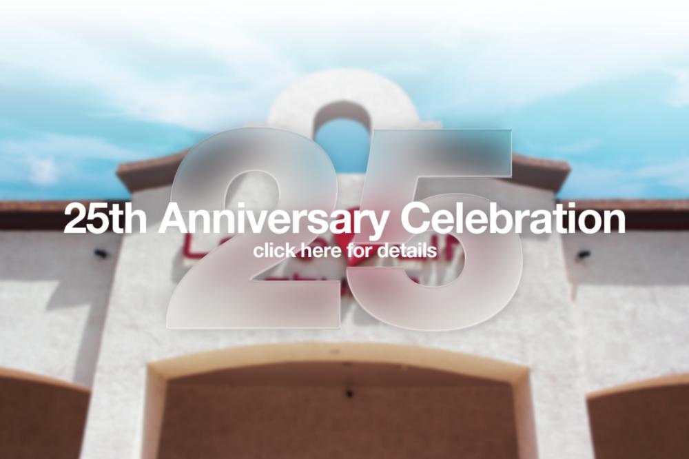 25 year web 2