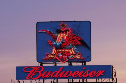 Budweiser Sign in downtown St. Louis, MO on 40