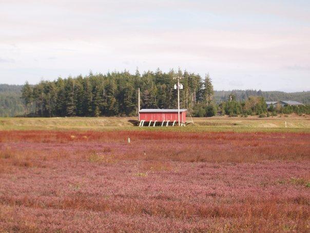 cranberry_bog_pumphouse