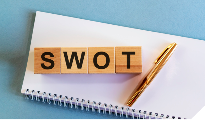 Conduct a SWOT Analysis