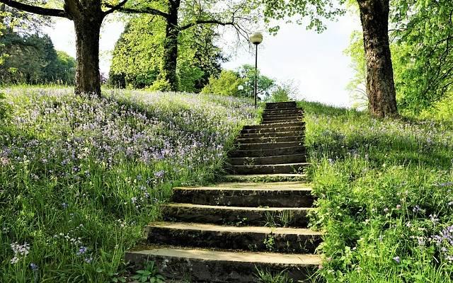 stairs crop 2