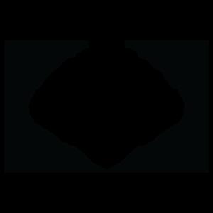 Semi Finalist - Flickers' Rhode Island International Film Festival 2021