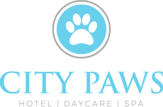 Dog Daycare, Boarding, Grooming