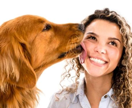 https://secureservercdn.net/198.71.233.159/i1r.cd1.myftpupload.com/wp-content/uploads/2018/09/dog-licking-human-458x373.jpg