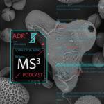 Mr. Solve Fall 2018 Mix