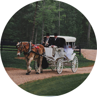 Wedding Venue Horse and Carriage