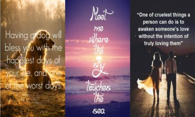 32 Best Quotes on Love with Images