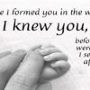 Bible verses with images Feture