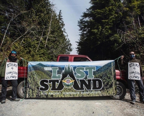Rainforest Flying Squad - Last Stand