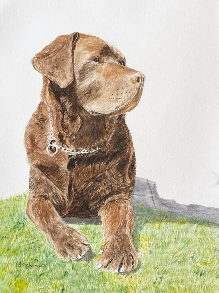 Harry the Dog, water color