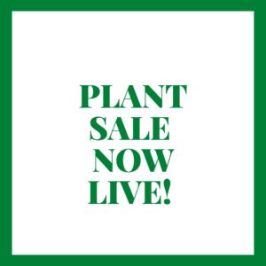 PLANT SALE NOW LIVE
