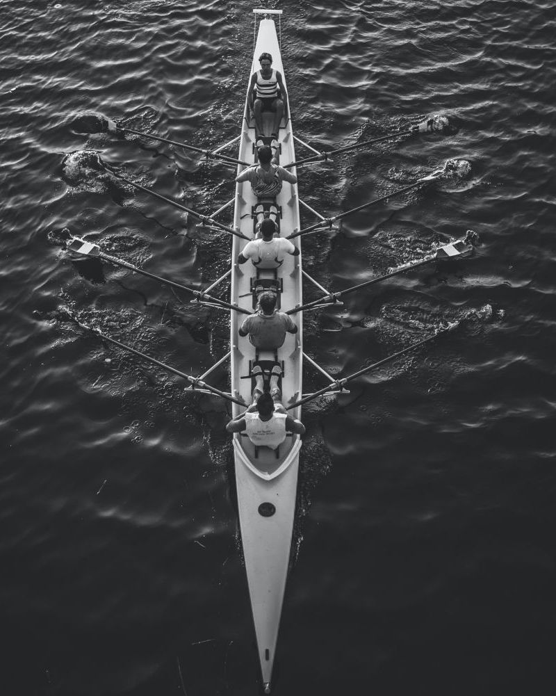 rowers in action