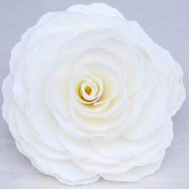 Beautiful Sky Rose