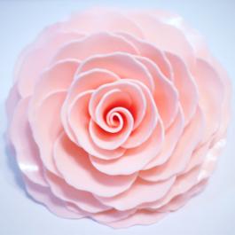Berry Bliss Rose
