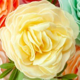 Forever Friends Garden Rose
