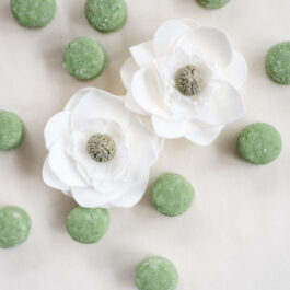 Dewy Gardens Macaron Sugar Scrub (Set of 6)