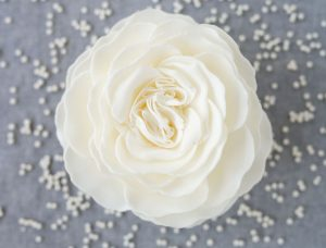 Gracious Pearl - A'marie's Romantic Collection