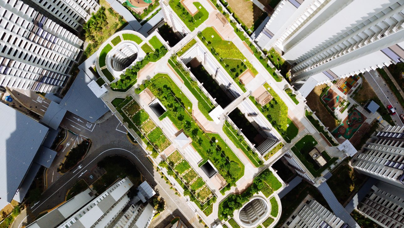 Denver Green Roof Initiative – Sustainability Impact