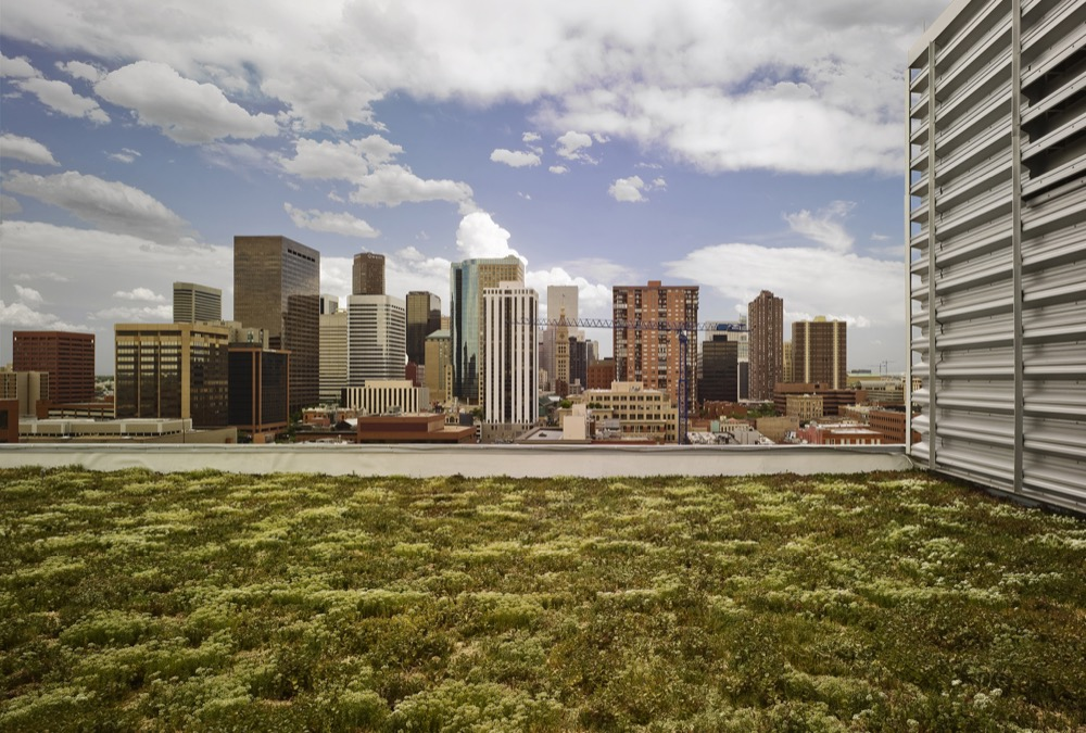 Green Roof Initiative in Denver – What You Need to Know (Continued)