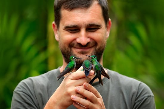 Man with Costa Hummingbirds perched on his hands