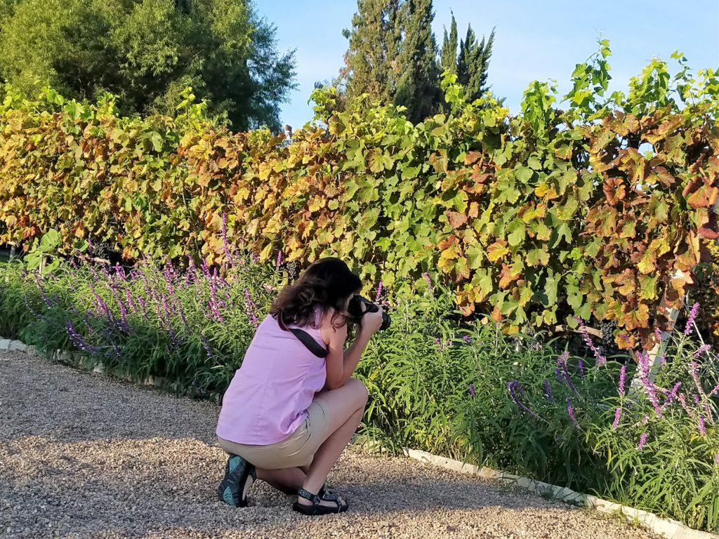 Tiffany taking pictures at Lavendar La Santisma Trinidad Winery, Mexico