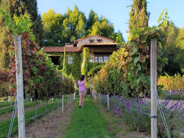 Romantic Getaway at La Santisima Trinidad Winery