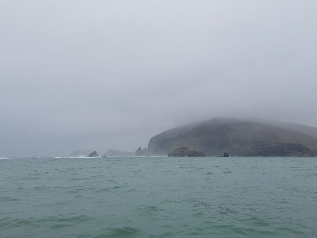 Foggy day heading out to Palomino Island, Peru