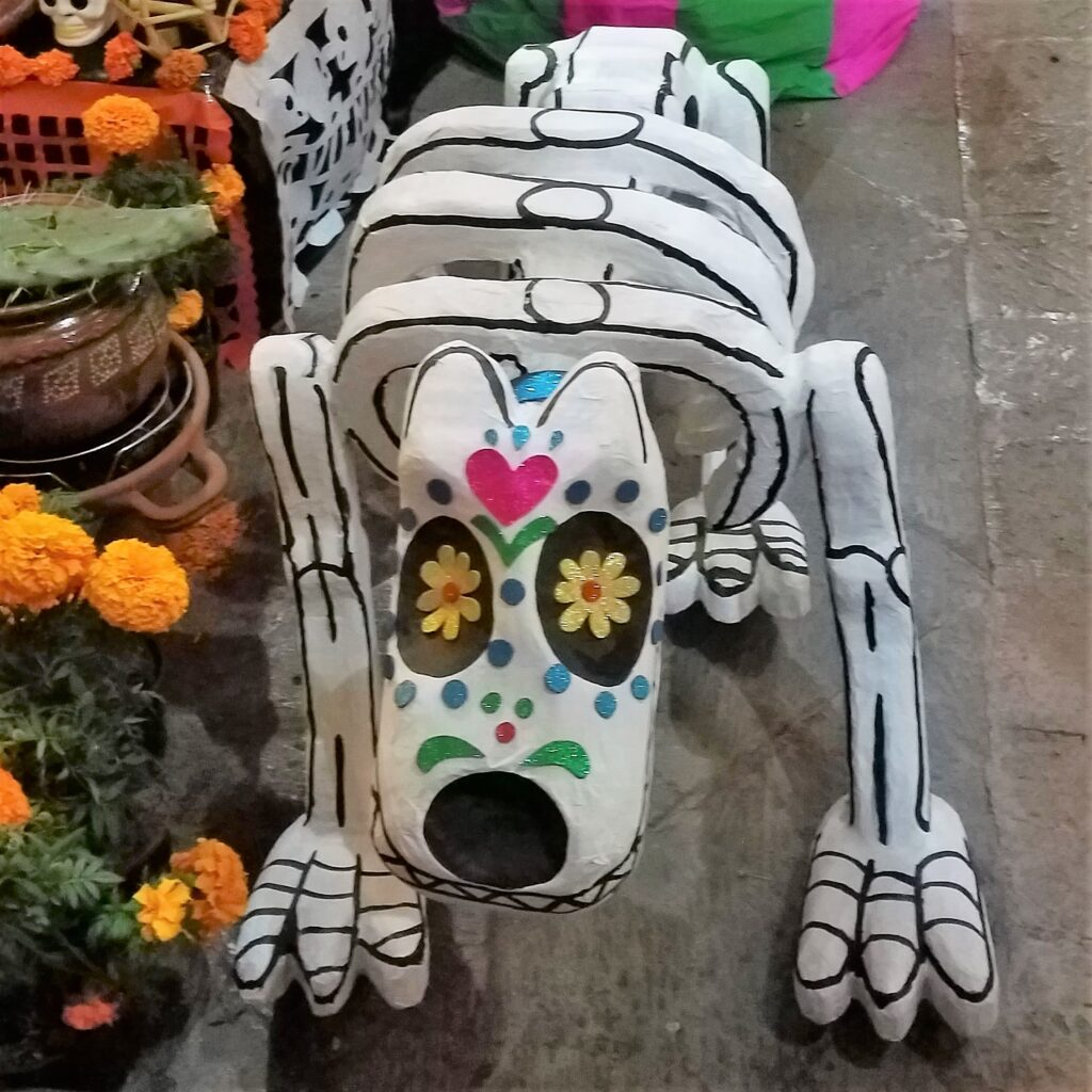 Blow up plastic dog for Day of the Dead