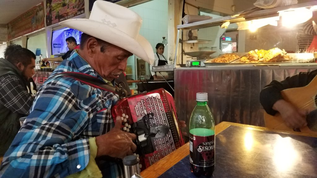 Mexican cowboy playing the accordion in Santa Rosa Jauregui