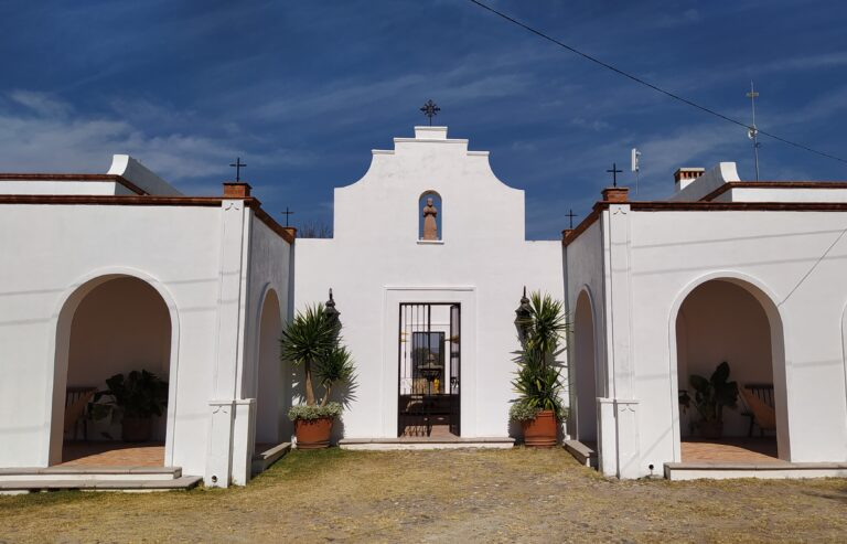 Unique Wineries to Visit Near San Miguel de Allende