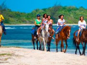 tours-braco-horseback-ride-beach
