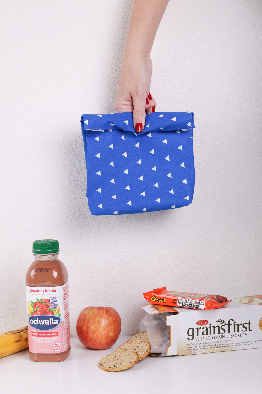Easy-Sew Fabric Lunch  Bag
