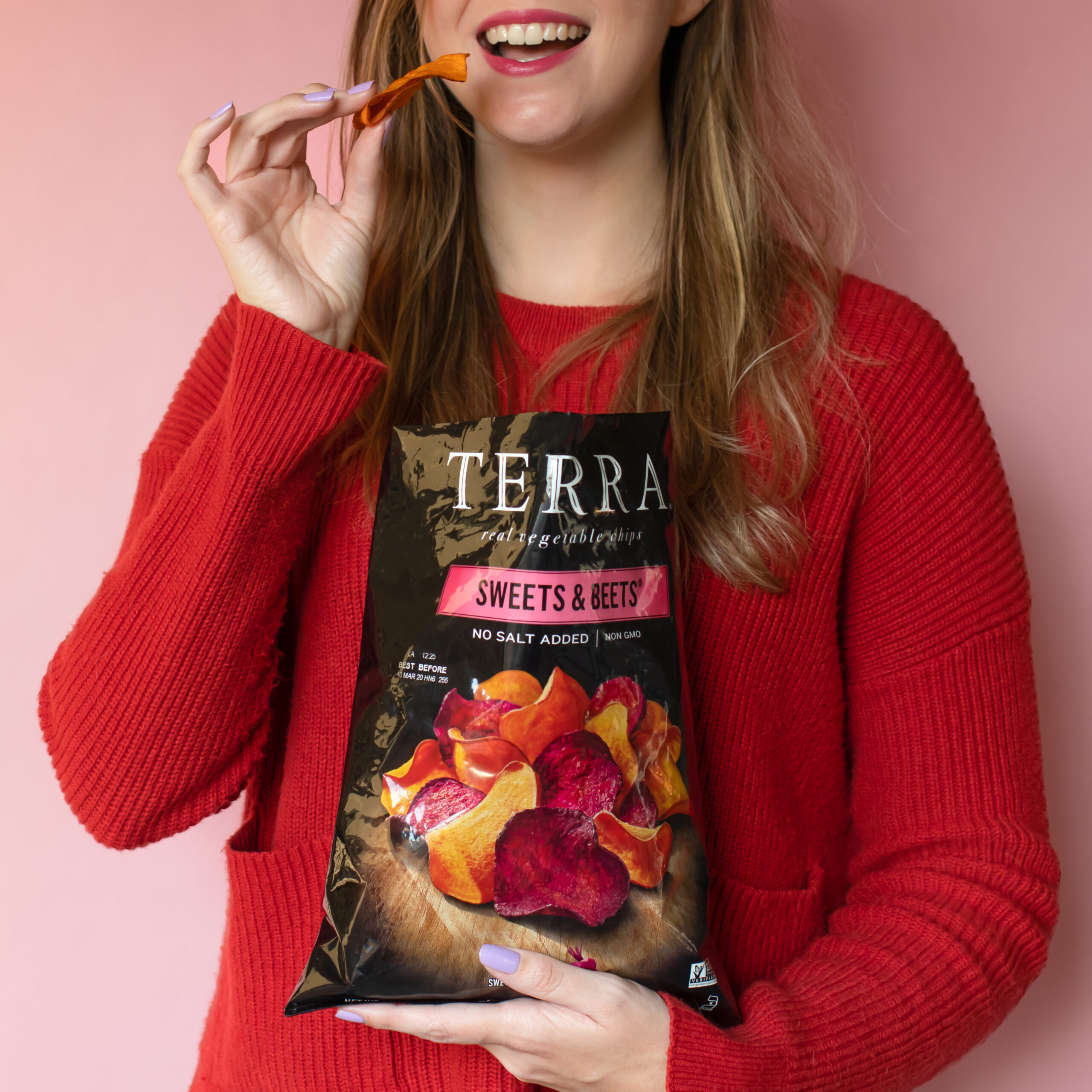 Terra-Chips-V2