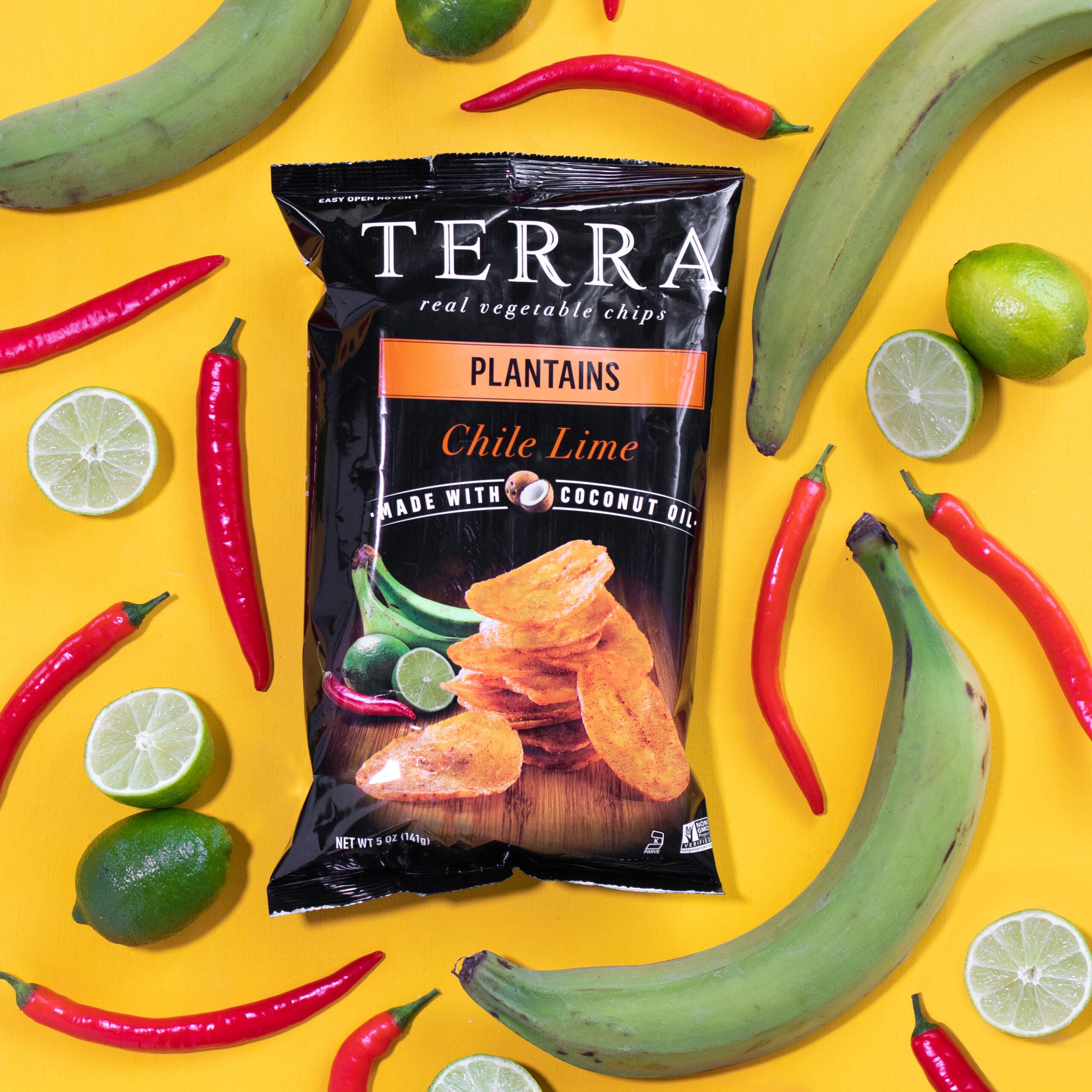 terra-chips-v2-3