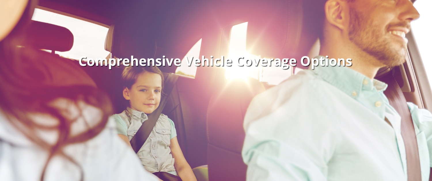 Comprehensive Vehicle Coverage Options