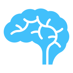 brain-256