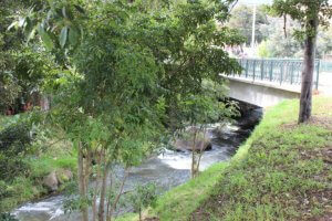 El Rio Teusaca atraviesa el casco urbano de La Calera