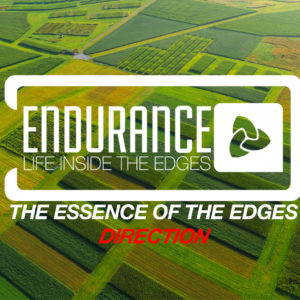 Endurance – Life Inside the Edges – The Essence of the Edges – Direction