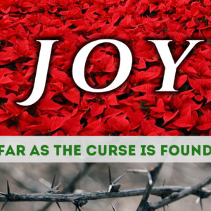 Joy…Far as the Curse Is Found – Final week