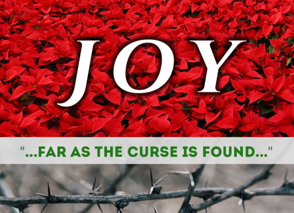 Joy…Far as the Curse is Found…