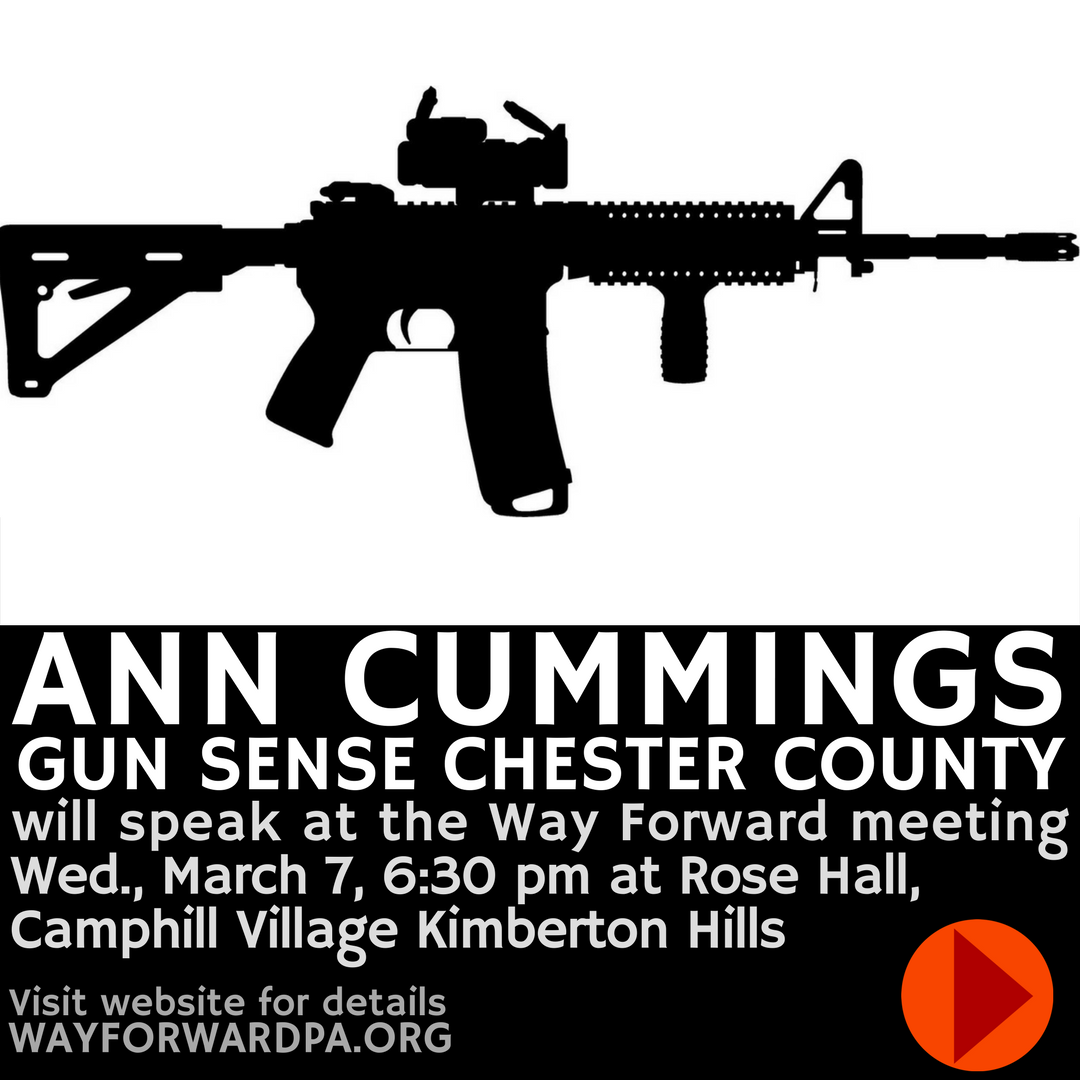 Ann Cummings, Gun Sense Chester County, To Speak At Way Forward 3/7/2018