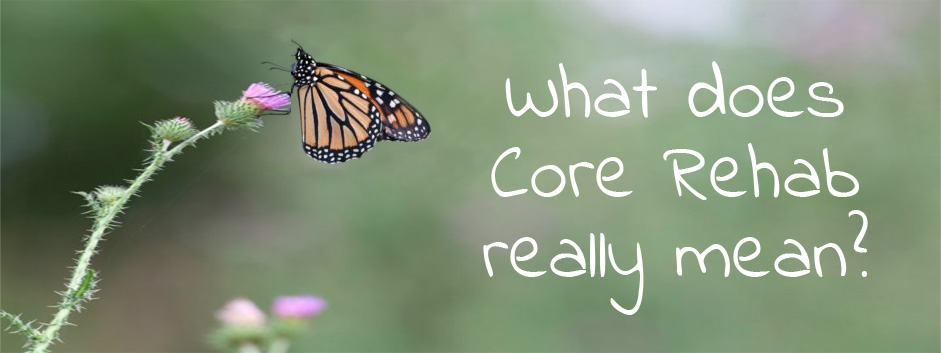 Core Rehab Really Mean