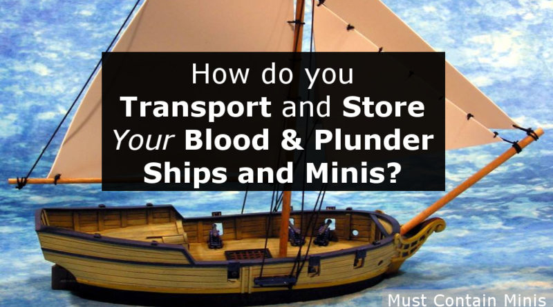 An Article requesting feedback on how people store and transport their Blood and Plunder Collections