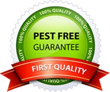 Pest free guarantee-first quality