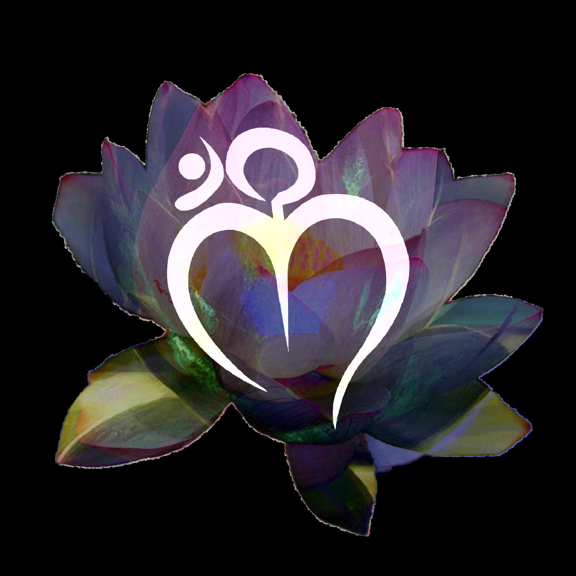 amoureux M en fleurs