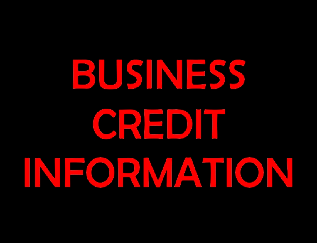 BUSINESS CREDIT INFORMATION GRAPHIC