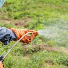 A-Man-Is-Spraying-Herbicide-55697594